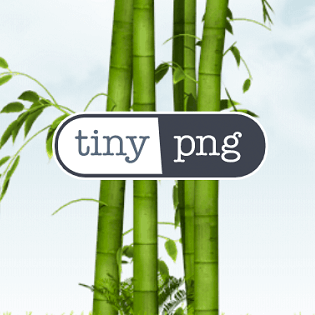 TinyPNG Pros & Cons