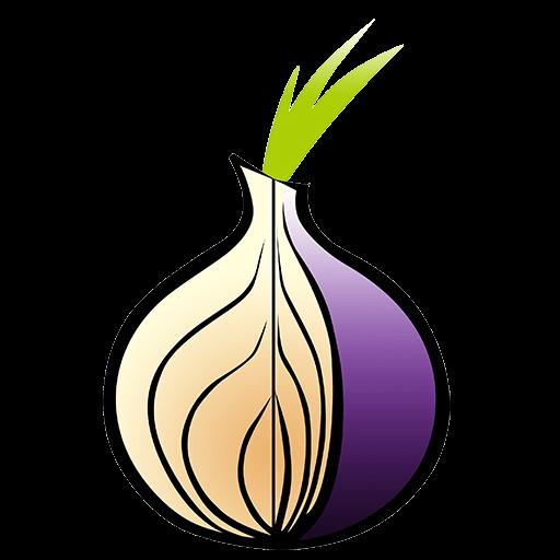 Tor Pros & Cons